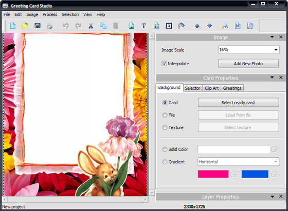 AMS Greeting Card Studio v5.21