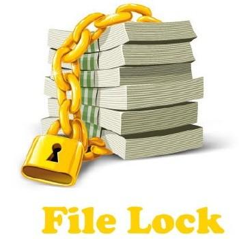 GiliSoft File Lock Pro v5.0