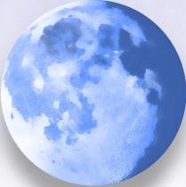 Pale Moon v8.0