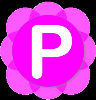 Pamela for Skype Basic v4.7.0.102