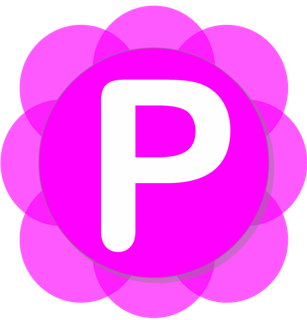Pamela for Skype Basic v4.8.0.45