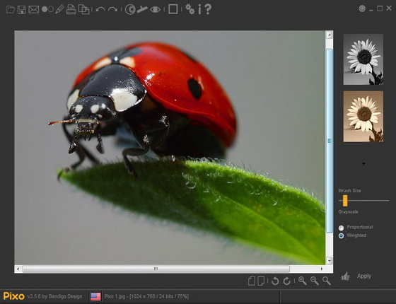 Pixo v3.5.6 Build 20110113